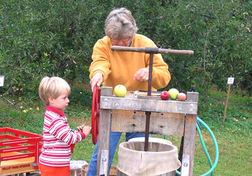 Pick your own Apples & Peaches during a Company Picnic, Bonfire, or Birthday Party at Melick's Town Farm in Oldwick, Califon, & Bridgewater, New Jersey.